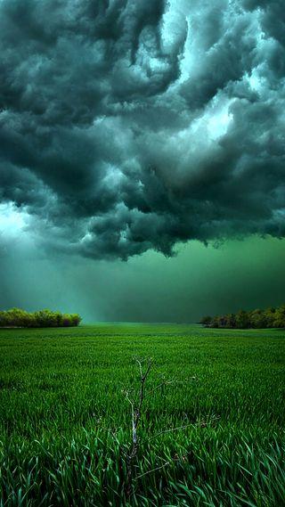 Обои на телефон трава, поле, облачно, облака, небо, зеленые, cloudy sky