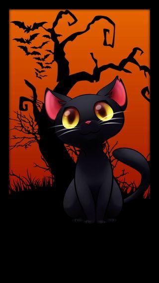 Обои на телефон хэллоуин, темные, счастливые, праздник, кошки, котята, happy