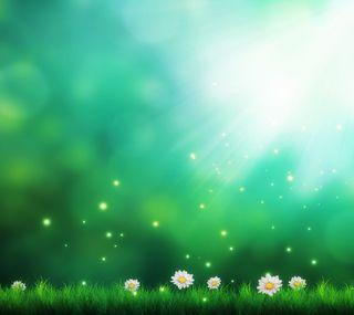 Обои на телефон мечта, цветы, крутые, красивый, зеленые