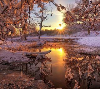 Обои на телефон холодное, снег, природа, пейзаж, зима, восход