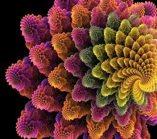 Обои на телефон фрактал, цветы, спираль, fractal spiral flo