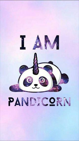 Обои на телефон horn, i am, розовые, фиолетовые, животные, цветные, панда, единорог