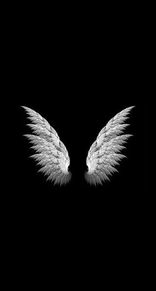 Обои на телефон dandelions, абстрактные, черные, цветы, логотипы, птицы, ангел, одуванчик