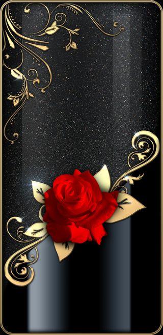Обои на телефон девчачие, черные, симпатичные, розы, прекрасные, любовь, красые, золотые, блестящие, redrose, love