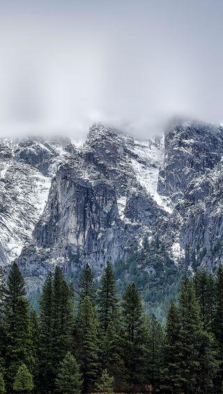 Обои на телефон топ, лес, горы, mountain top