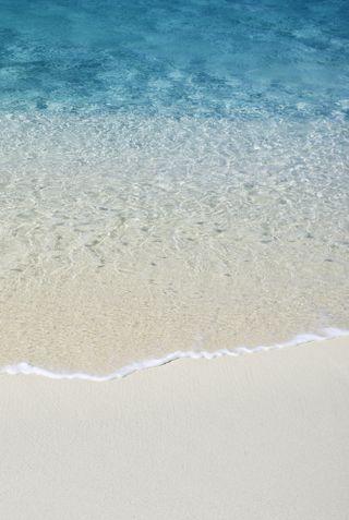 Обои на телефон эпл, пляж, лев, os x lion, mac, apple