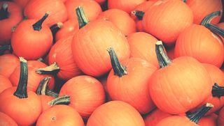 Обои на телефон тыква, хэллоуин, ужасные, страшные, октябрь