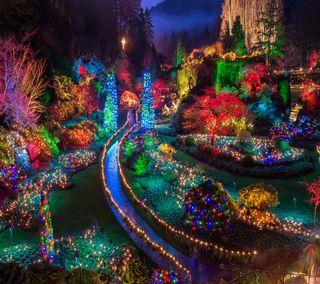 Обои на телефон путь, свет, рождество, праздник, дерево