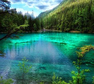 Обои на телефон озеро, природа, прекрасные, пейзаж, лес, зеленые, деревья