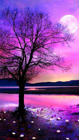 Обои на телефон магия, ночь, небо, звезды, дерево, magic night