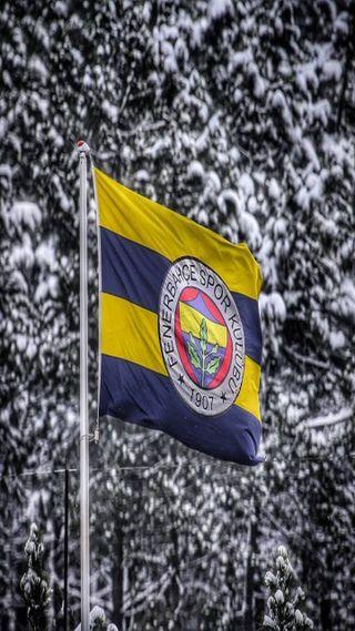 Обои на телефон чемпион, футбол, флаг, фенербахче, турецкие, спорт, снег, команда, клуб