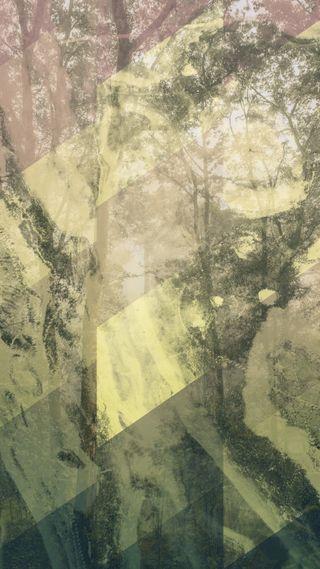Обои на телефон лес, домашний экран, дизайн, xl, quadhd, pixel, diagonal woods