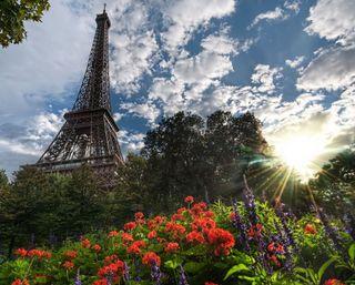 Обои на телефон эйфелева башня, солнечный свет, цветы, франция, париж, башня