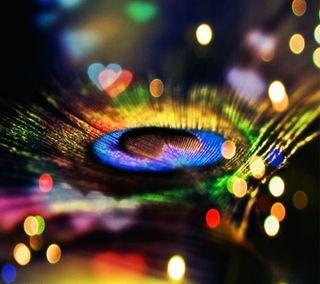 Обои на телефон nexus, samsung galaxy, peacock feather, крутые, галактика, приятные, сердце, самсунг, красочные, огни, перо, павлин