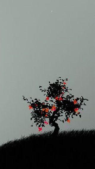 Обои на телефон китай, японские, черные, одинокий, дерево, восточные, аниме, i6