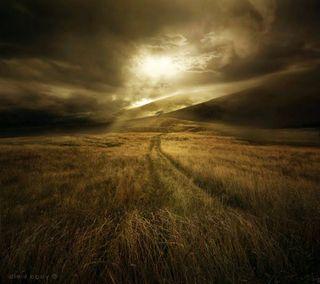 Обои на телефон холмы, трава, солнечный свет, пшеница, путь, поле, облака, небо, лучи, дорога, lighted path