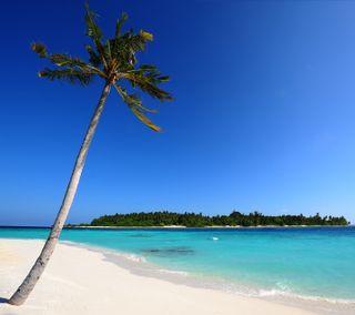 Обои на телефон нокиа, пляж, x2-01, nokia c3, maldivian beach