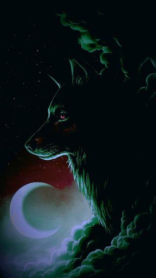 Обои на телефон животные, волк