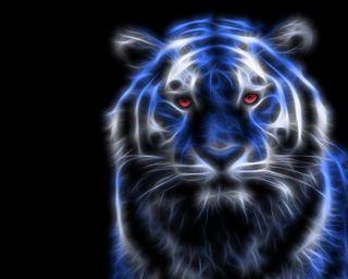 Обои на телефон фрактал, тигр, синие, коты, животные, blue tiger fractal