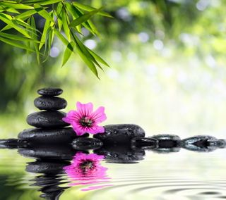 Обои на телефон релакс, цветы, спа, расслабляющие, камни, вода, relaxing spa