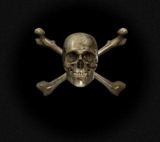 Обои на телефон голова, череп, кость, skull 3d, 3д
