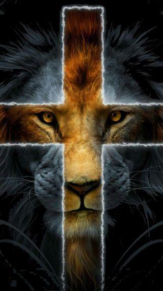 Обои на телефон леон, лев, крест, lion cross, leon cruz, judah lion