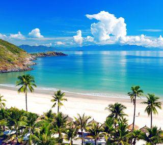 Обои на телефон пляж, пальмы, море, лето, beach hd