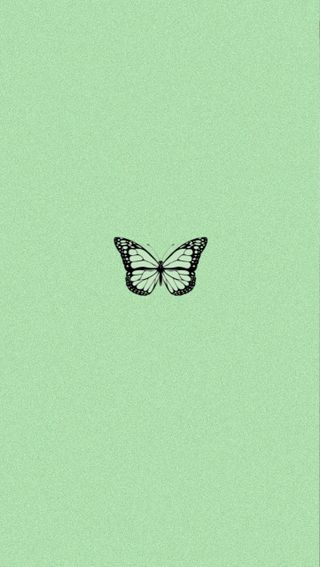 Обои на телефон тема, эстетические, черные, стена, милые, зеленые, бабочки, айфон, iphone, aesthetic butterfly