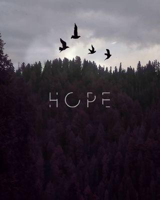 Обои на телефон надежда, любовь, love