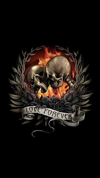 Обои на телефон крылья, череп, розы, навсегда, любовь, love