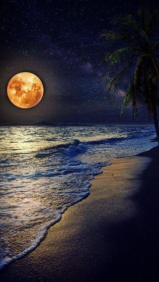 Обои на телефон hd, plus, природа, пейзаж, море, закат, пляж, бразилия, бумажный