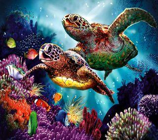 Обои на телефон черепаха, turtle------------, ------------