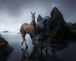Обои на телефон лошади, черные, фантазия, пляж, лошадь, берег, black horse
