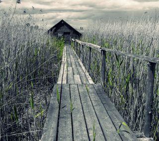 Обои на телефон ок, приятные, природа, небо, мост, красота, классные, зеленые, вид