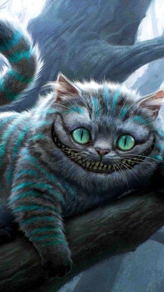 Обои на телефон чудо, страна чудес, кошки, глаза, wonderland alicia