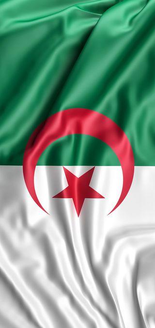 Обои на телефон флаг, купе, алжир, uhd, fennec, dz, drapeau, coupe afrique, caf, algerie, 4k