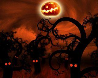 Обои на телефон жуткие, хэллоуин, тыква, страшные, лес, крутые, красые, деревья, дерево, creepy trees