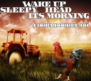 Обои на телефон трактор, восход, утро, rooster, its morning