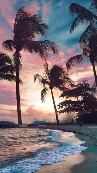 Обои на телефон пляж, пальмы, лето, закат