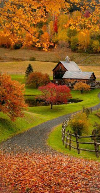 Обои на телефон ферма, страна, barn
