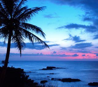 Обои на телефон тропические, прекрасные, закат
