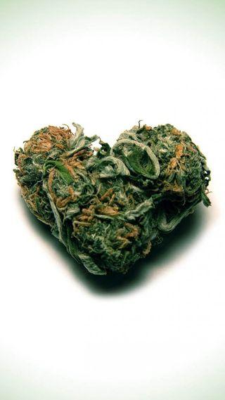 Обои на телефон сердце, растения, марихуана, листья, конопля, зеленые, дым, w**d heart, pot, dope, buds