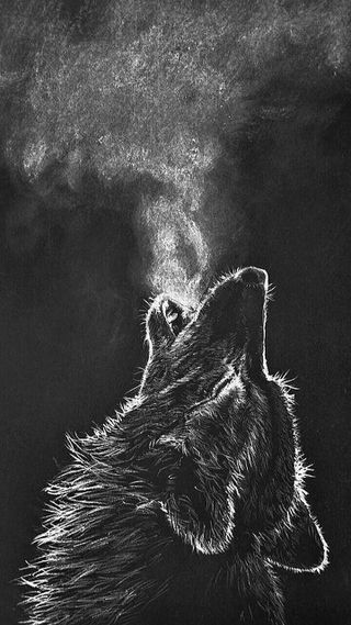 Обои на телефон облака, животные, деревья, дерево, волк, note, fe