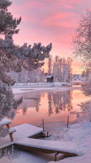 Обои на телефон озеро, дерево, снег, зима