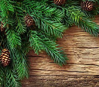 Обои на телефон украшение, счастливое, рождество, ель, дерево