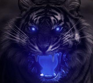Обои на телефон тигр, черные, синие, свет