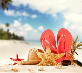 Обои на телефон тропические, ракушки, пляж, морская звезда, лето