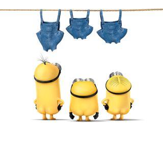 Обои на телефон миньоны, желтые, синие