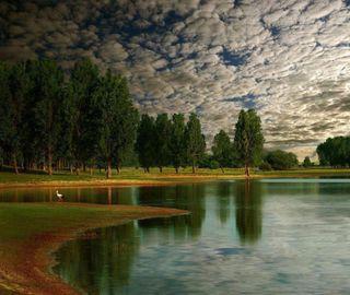 Обои на телефон озеро, природа, небо, зеленые, деревья, вода
