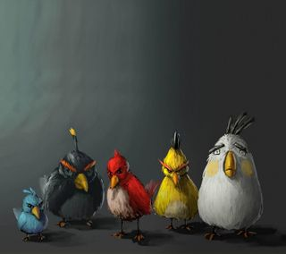 Обои на телефон злые, птицы, игра, забавные, anggry birds
